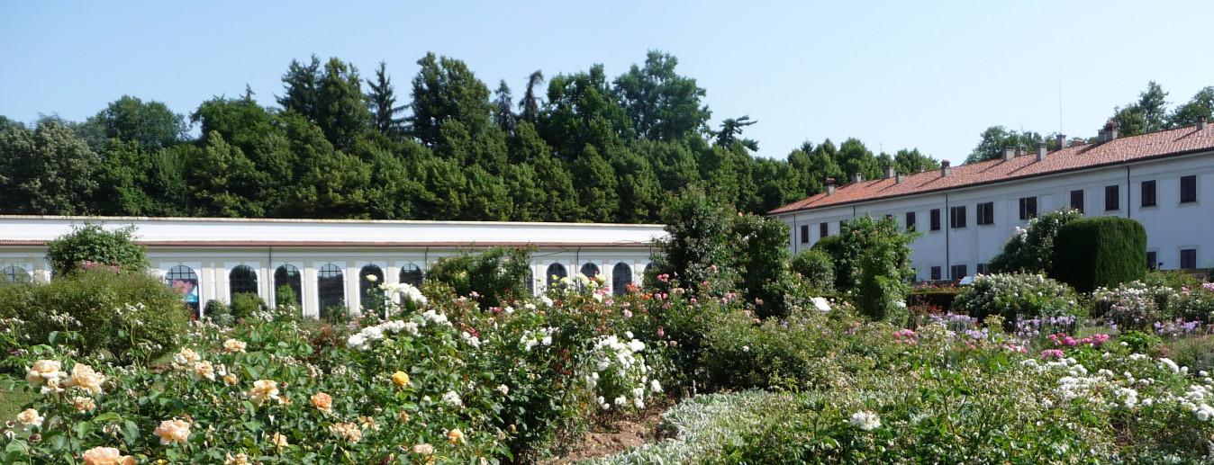 Niso Fumagalli Rose Garden