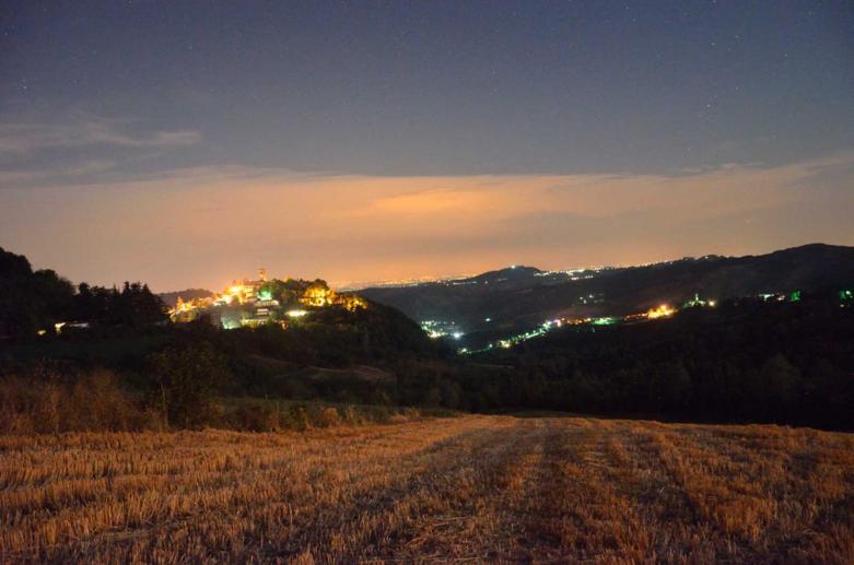 Village of Fortunago