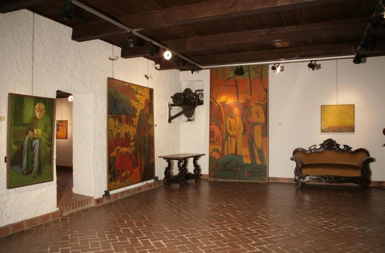 Museo Salvini