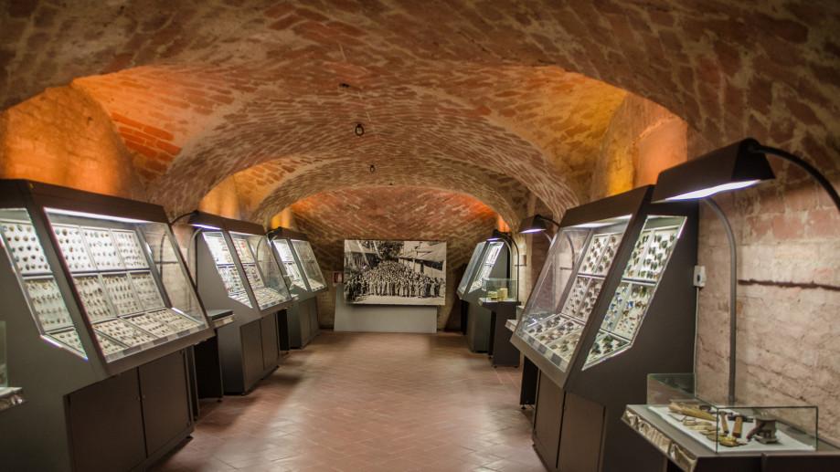 Museo del Bijou