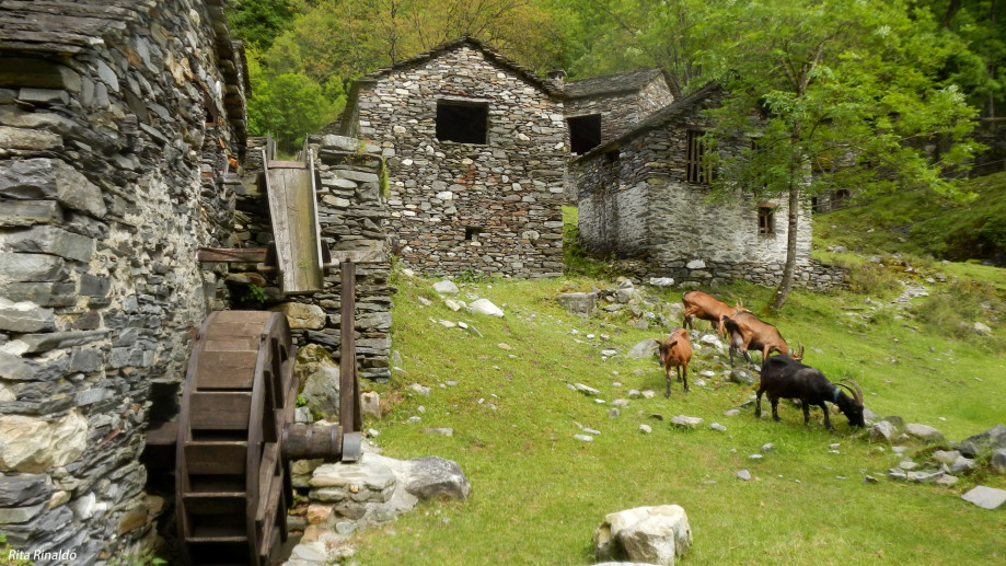 Ancient mills and rural structures