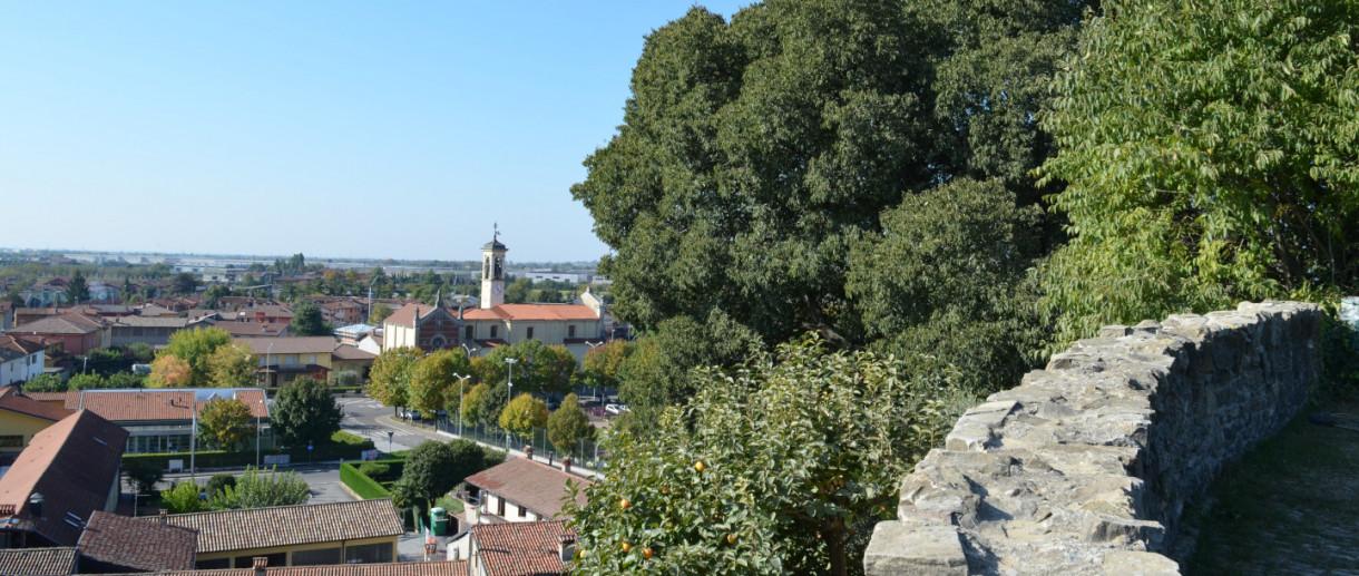 Il Bagolaro del Castello di Brusaporto