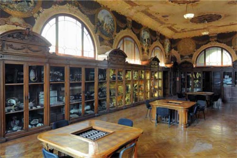 Museo delle scienze Casartelli