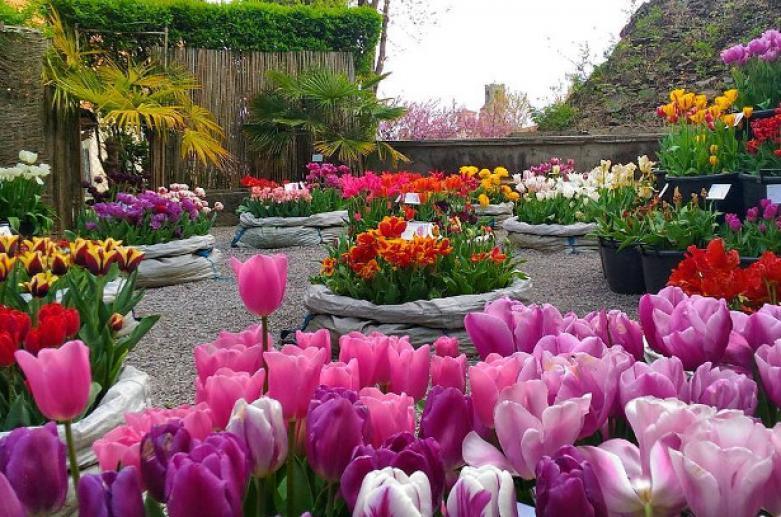 Lorenzo Rota Botanical Gardens
