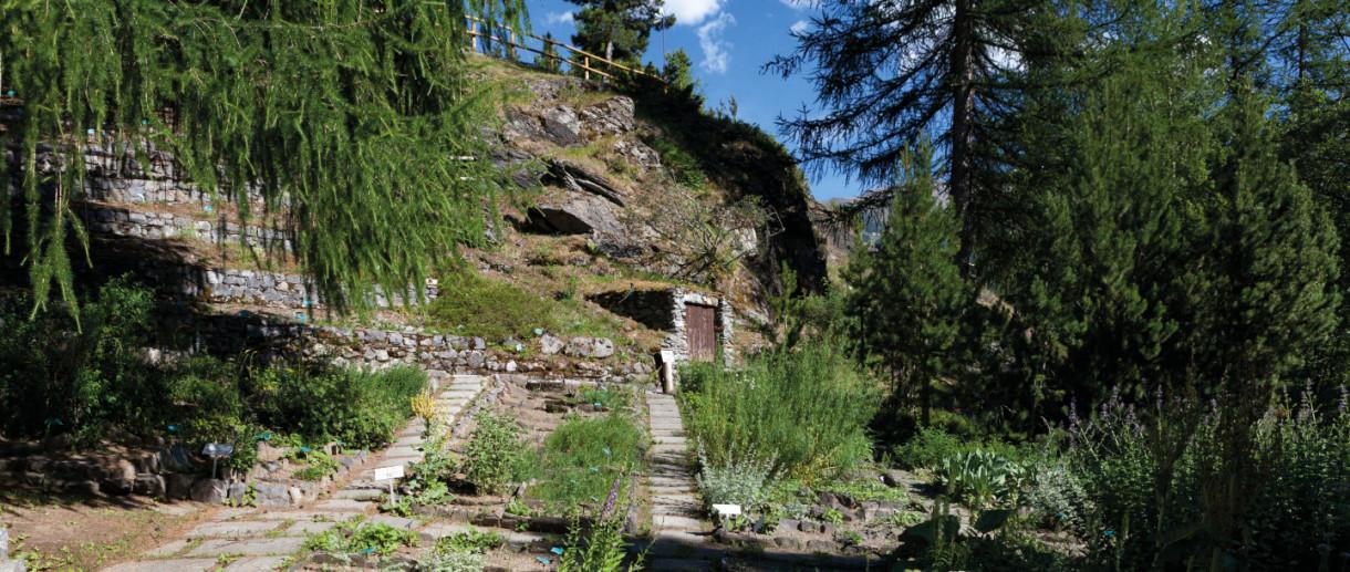 Giardino Botanico Alpino Rezia, Giardini Sondrio