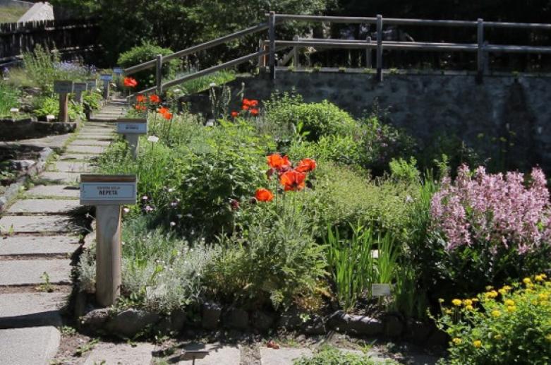"""Jardín botánico Alpino """"Rezia"""" – Bormio"""