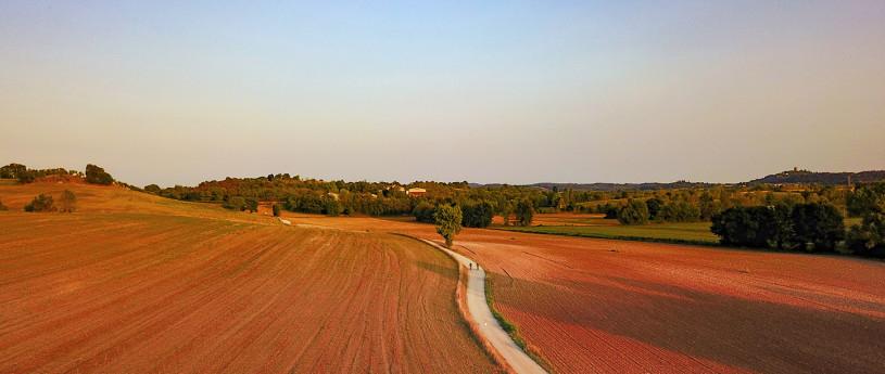 Insider Mantova - Castiglione