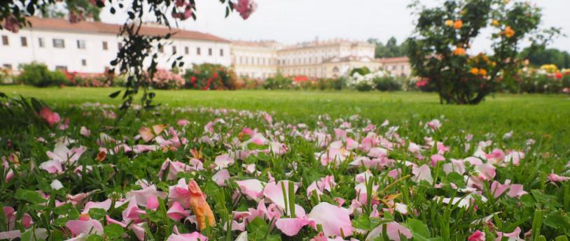 Primavera alla Reggia e al Parco di Monza