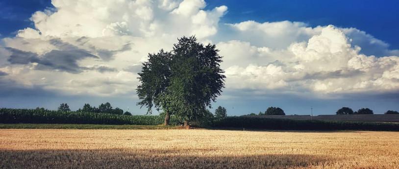 Borghi e tradizioni della pianura bresciana