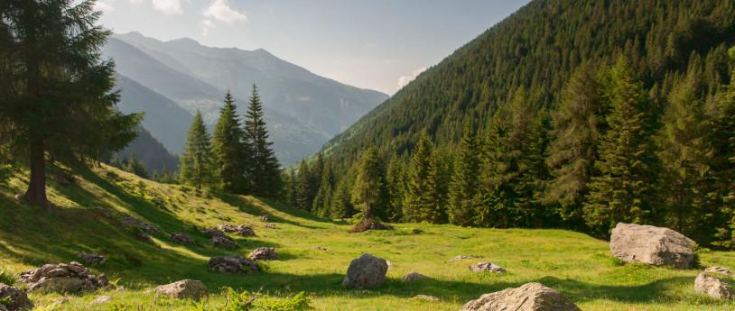 Valtellina per tutte le stagioni