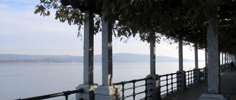 Taino Capronno Cadrezzate Montecalvo