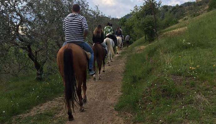 Azienda Agricola Villa Carla