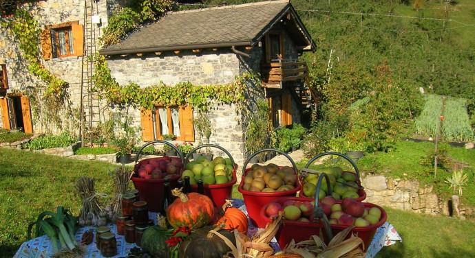 Azienda Agricola Il Giardino della Frutta
