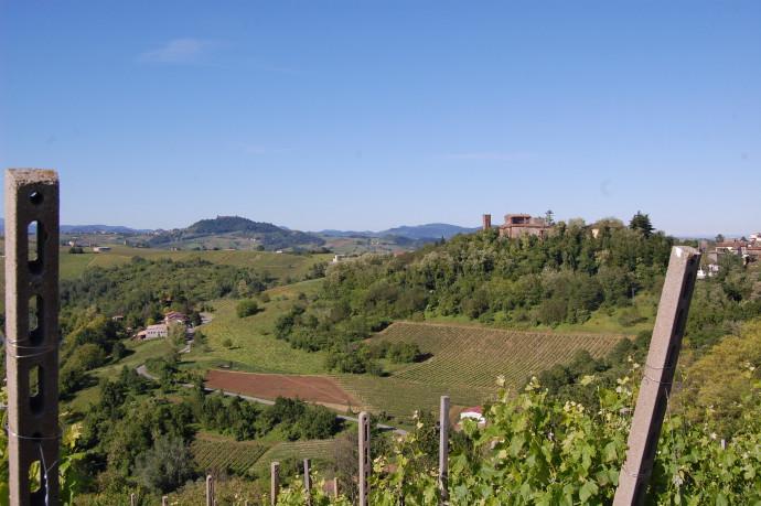Assaggi tra vino e castelli