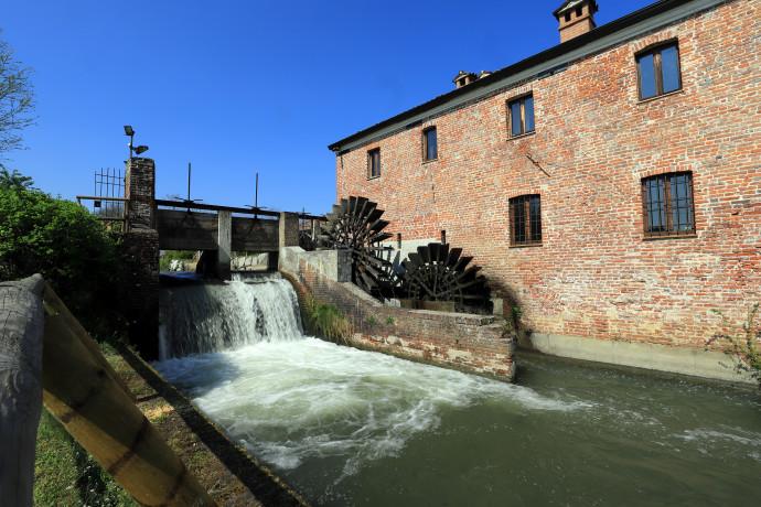 Visita guidata a Vigevano e al Mulino di Mora Bassa