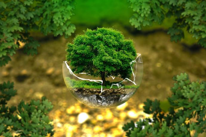 Weekend ecologico