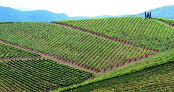 L'Alto Oltrepò: Appennino di Lombardia