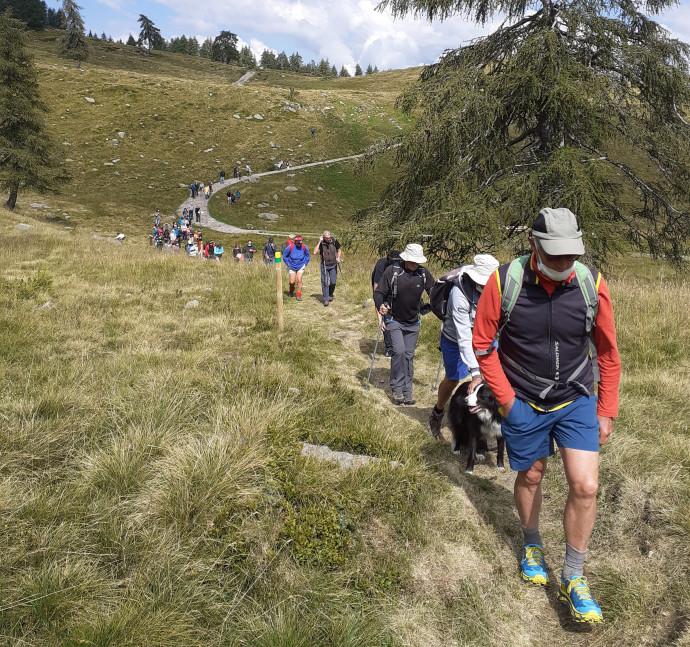 Il sentiero della Trementina: l'oro colato delle montagne della Valgrigna