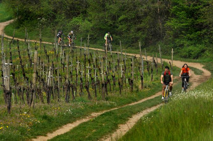 Franciacorta Itinerary, let's traverse it