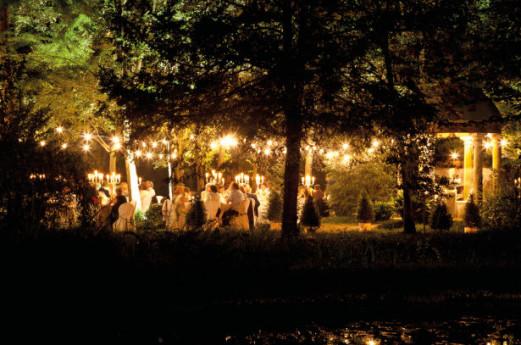 Spiedo stellato nel bosco incantato