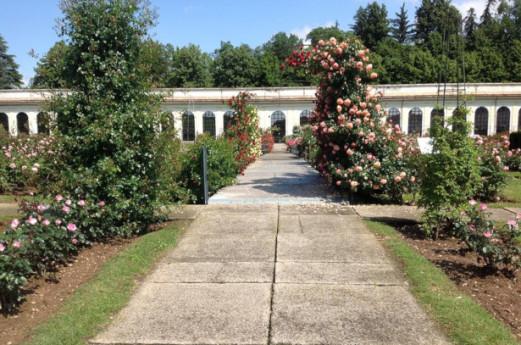 Orangerie roseto