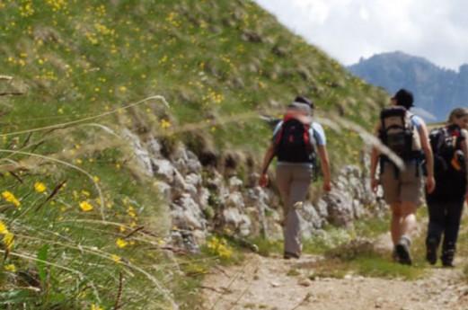 Camminando per sentieri nei dintorni di Selvino