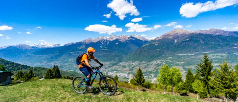 Felpa Alpe Piazzola