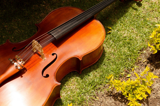 Musica Da Camera - Quartetto d'Archi