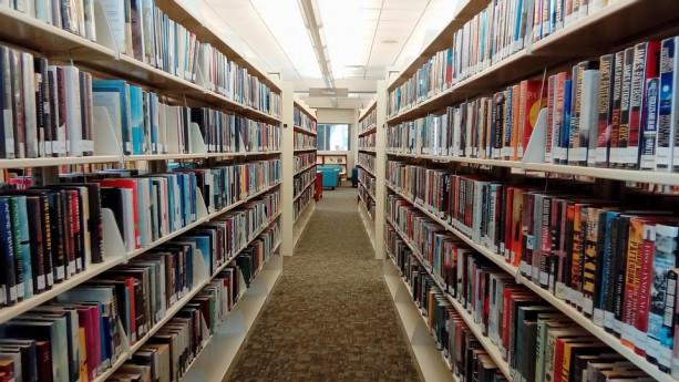 Divagazioni sui libri e il piacere della lettura