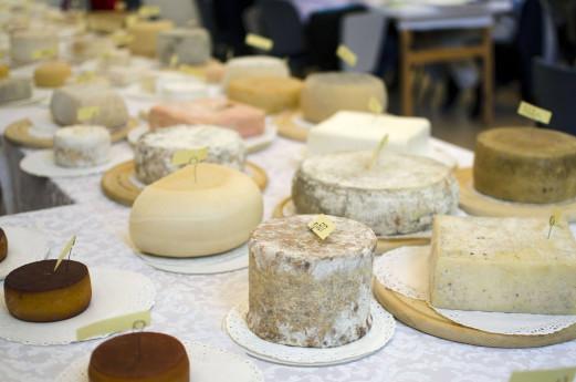 Corso per aspiranti assaggiatori di formaggi