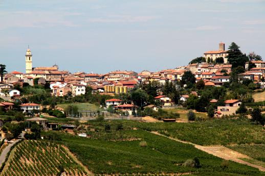 Primavera dei vini - Festa del Bonarda