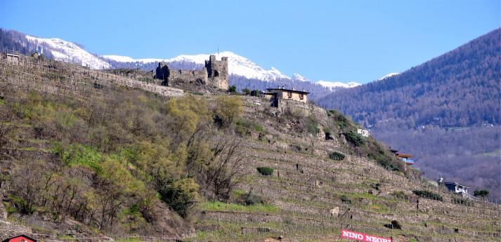 Valtellina DOCG