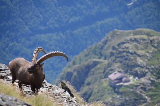 Apertura Rifugi in ValSeriana e Val di Scalve