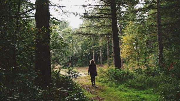 Passeggiate accompagnate per l'altopiano di Clusone