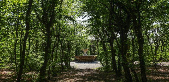The Talking Garden: sensory visit