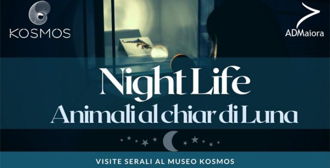 NIGHTLIFE - Animali al chiar di luna
