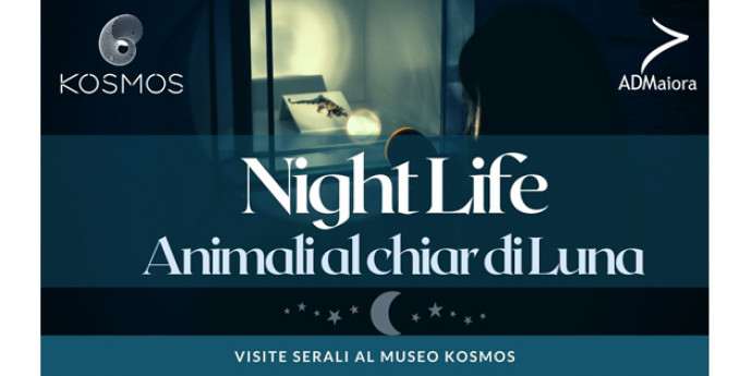 ANNULLATO - Nightlife. Animali al chiar di luna