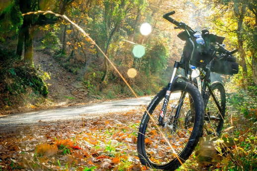 Bicicletta mtb pixabay