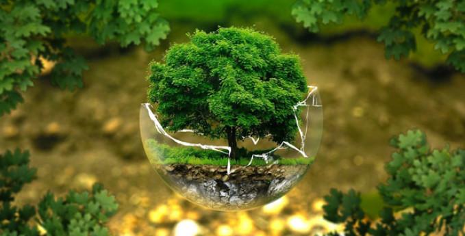 A lezione di Etica e Ambiente