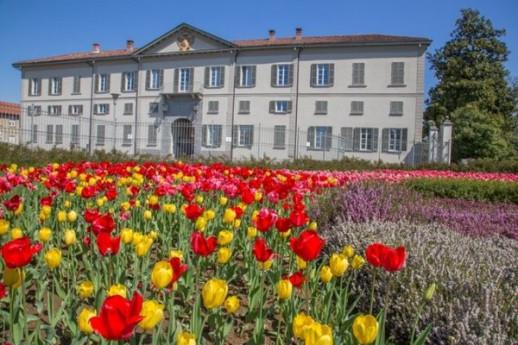 Villa Raimondi e le sue collezioni di glicini e peonie