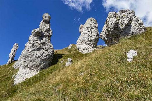 In alta Valsassina sulle tracce degli animali selvatici