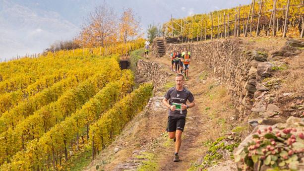 Valtellina wine trail