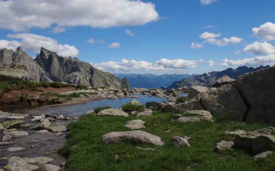 Parc Du Bernina, Du Disgrazia, De La Val Masino Et De La Val Codera