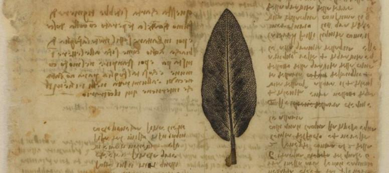 L'ultima Cena di Leonardo da Vinci e il Codice Atlantico