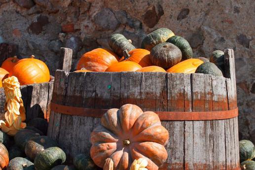 La zucca mantovana, prodotti tipici lombardi