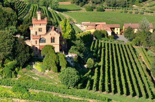 Wine and Flavor Trail Franciacorta,