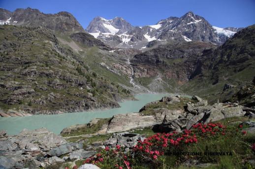 Diga di Alpe Gera