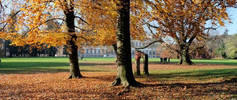 Foliage Parco di Monza