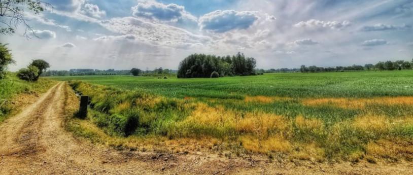 Scopri la pianura bresciana