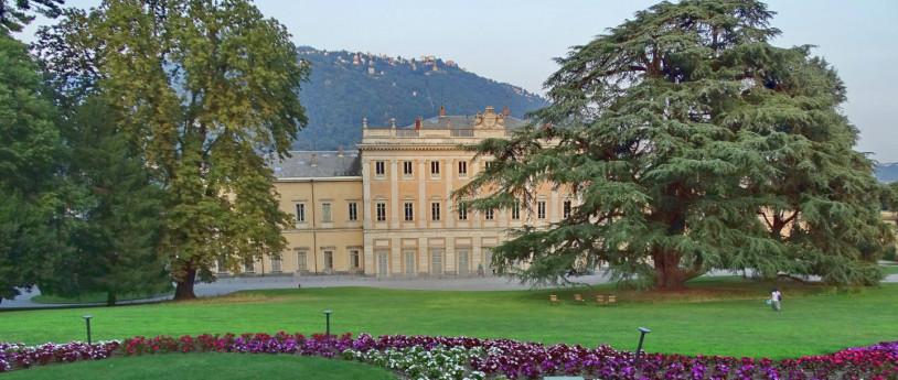 Alberi monumentali in Lombardia